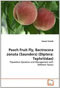 Amazon.com: Peach Fruit Fly, Bactrocera zonata (Saunders ...