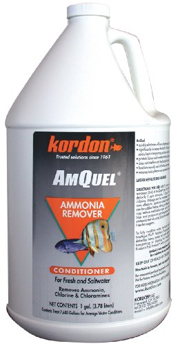 Image of Kordon  #31261 AmQuel- Ammonia Detoxifier for Aquarium, 1-Gallon