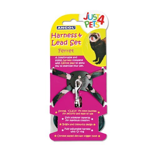Ancol Ferret Harness and Lead by Ancol