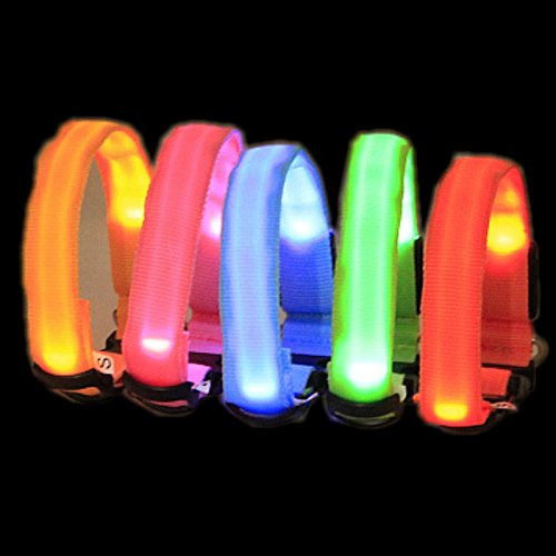 AOBILE Collar Perro Led Night Safety Light-up Flashing Glow