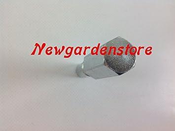 Kit Tope de pistones bloqueo motor motosierra + llaves Extractor smonta embrague: Amazon.es: Bricolaje y herramientas