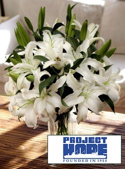 Project HOPE Siberia Lilies by Organic Bouquet