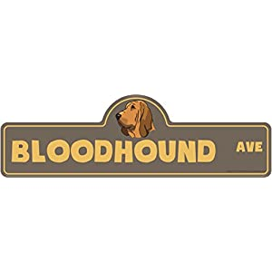 "Bloodhound Street Sign | Indoor/Outdoor | Dog Lover Funny Home Décor for Garages, Living Rooms, Bedroom, Offices | SignMission personalized gift | 20"" Wide Plastic Sign 17"