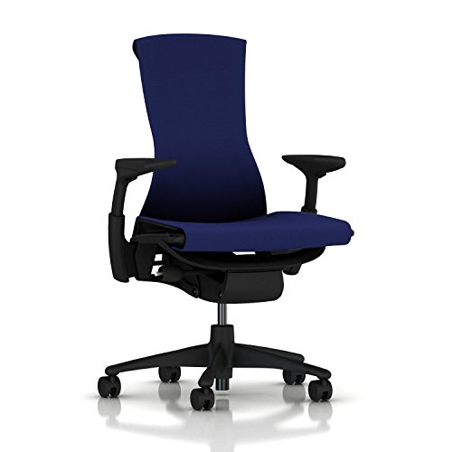 Herman Miller Executive Chair (Herman Miller Embody Chair: Fully Adj Arms - Graphite Frame/Base - Standard Carpet Casters)