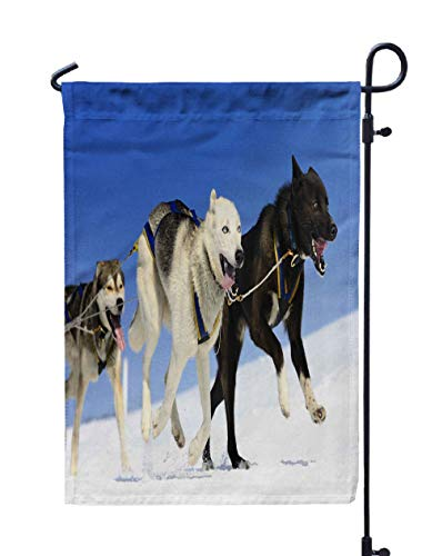 Shorping Farm Garden Flag, 12x18Inch Dog Team Running in The Snow is for Holiday and Seasonal Double-Sided Printing Yards Flags]()