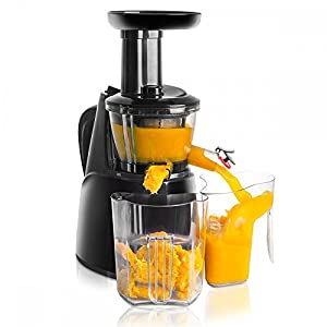 Super Extracteur de Jus Slow JUICER Essence à Rotation Lente 150W