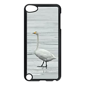 Whooper Swan Ipod Touch 5 Cases for Girls Protective, Case for Ipod Touch 5 for Boys [Black]
