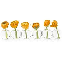 Chive – Caterpillar, Small Clear Glass Bud Vase for Short Flowers, Unique Low Sitting Flower Vase, Cute Floral Vase for Home Decor, Weddings, Floral Arrangements, Arranging, Set of 6 Round Balls