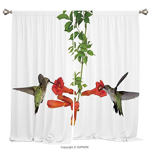 Vineyards Nectar (Rod Pocket Curtain Panel Thermal Insulated Blackout Curtains for Bedroom Living Room Dorm Kitchen Cafe/2 Curtain Panels/108 x 72 Inch/Hummingbirds Decor,Two Hummingbirds Sip Nectar from a Trumpet Vine)