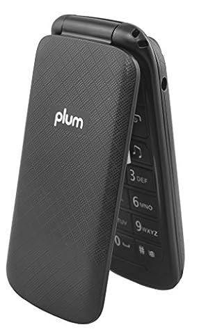 Unlocked Flip GSM Cell Phone - Camera Bluetooth FM Radio Dual Sim Worldwide - Black (Tmobile Go Cell Phones)