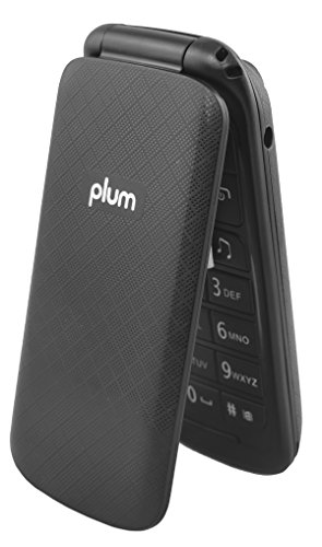 Unlocked Flip GSM Cell Phone - Camera Bluetooth FM Radio Dual Sim Worldwide - Black