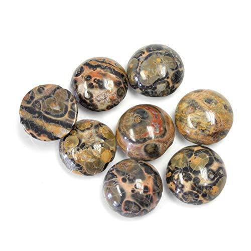 (10mm Round Genuine Leopard Skin Agate Calibrated Cabochon 12 Piece Lot Flat Back DIY Jewelry Making)