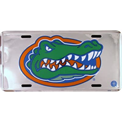 HangTime Florida Gators Super Stock Metal License Plate 6 x 12: Automotive