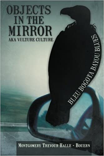 Objects in the Mirror aka Vulture Culture Paperback – February 15, 2013