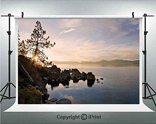 Lake Photography Backdrops Lake Tahoe at Sunset with Clear Sky and Single Pine Tree Rest Peaceful Weekend Photo,Birthday Party Background Customized Microfiber Photo Studio Props,8x8ft,Blue Grey