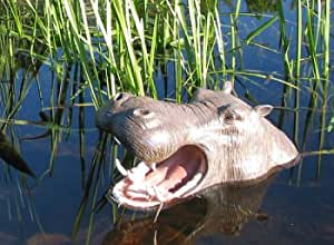 Hippo Head Open Mouth