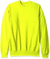 Hanes mens Ecosmart Fleece Sweatshirt
