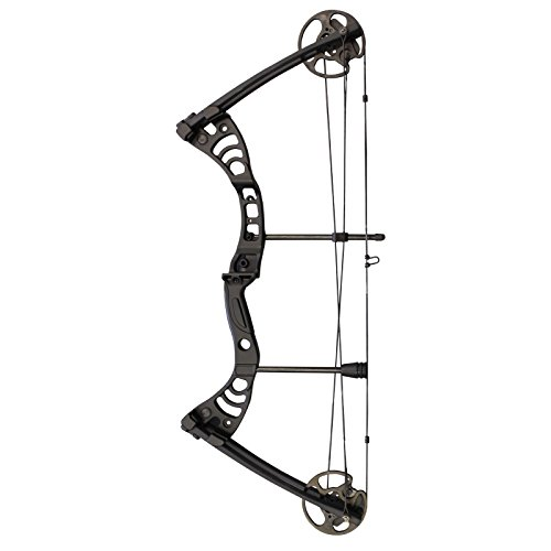 Southland Archery Supply SAS Scorpii 55 Lb 32