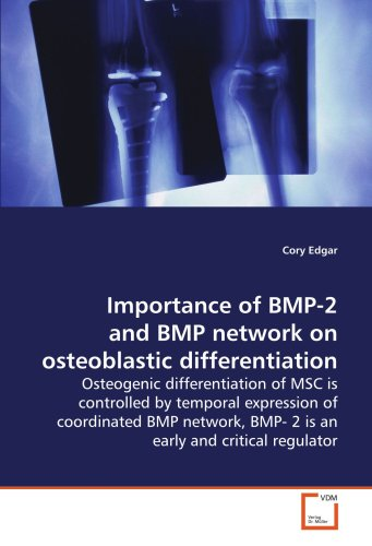 Importance of BMP-2 and BMP network on osteoblastic differentiation: Osteogenic differentiation of MSC is controlled by temporal expression of ... BMP- 2 is an early and critical regulator