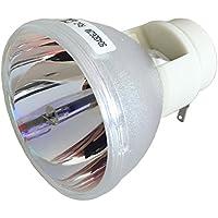 Litance Projector Bulb Replacement for Optoma BL-FP230D, HD20, TX612 / BL-FP230H, GT750 / BL-FP230I, HD33, HD300X, HD3300 / ViewSonic RLC-049, PJD6241, PJD6381, PJD6531W / RLC-061, PRO8200, PRO8300