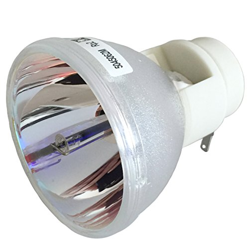 Video Projector Bulb Replacement (Litance Projector Bulb Replacement for Optoma BL-FP230D, HD20, TX612 / BL-FP230H, GT750 / BL-FP230I, HD33, HD300X, HD3300 / ViewSonic RLC-049, PJD6241, PJD6381, PJD6531W / RLC-061, PRO8200, PRO8300)