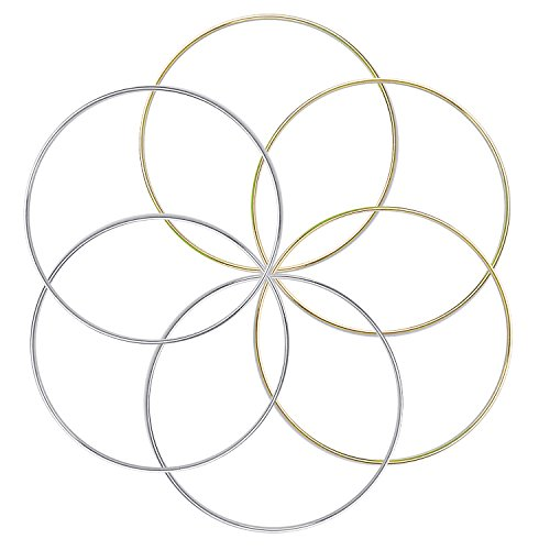 BronaGrand 6pcs Metal Rings Hoops Macrame Rings for Dream Catchers and Crafts,6 inch, Gold and ()