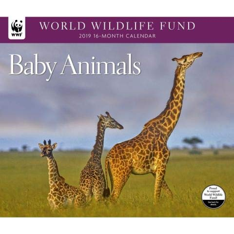2019 WORLD WILDLIFE FUND Baby Animals Deluxe Wall Calendar
