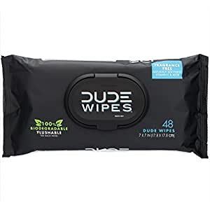 DUDE Wipes Flushable, Unscented with Vitamin-E & Aloe, 100% Biodegradable, Dispenser Pack (1 Pack, 48ct)