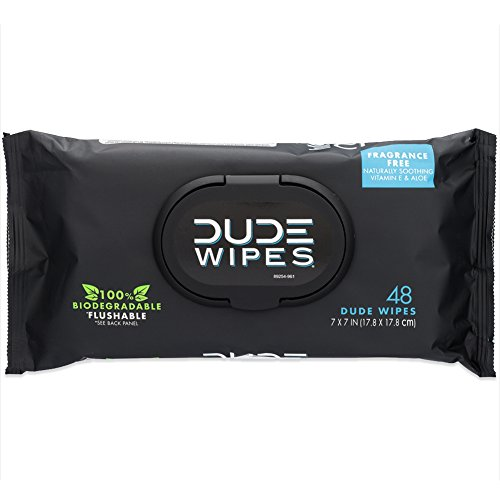 The 10 best dude wipes flushable wipes single pack