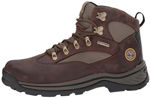 Marron De Chocorua green Trail Homme W Timberland brown Randonnée Chaussures gRYwq