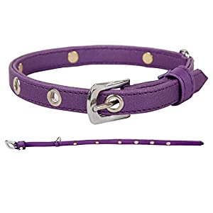PetSutra Faux Leather Cat Collars with Crystals, Purple (for Neck Size 9.5in to 12.3in)