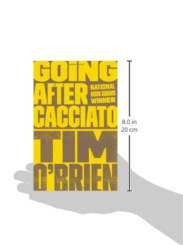 Tim O'Brien Critical Essays
