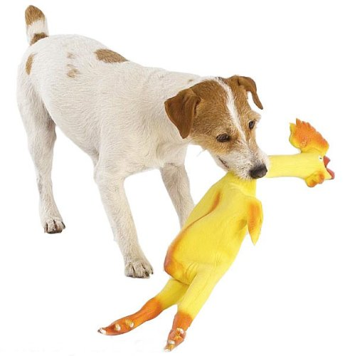 Rubber Chicken (24 Inches) – Extra X Large squeaking dog pet toy – gag gift, My Pet Supplies