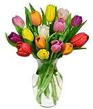 Flowers - Rainbow Tulip Bouquet - 15 Stems