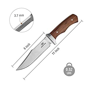 Mossy Oak 11-inch Fixed Blade Bowie Knife, Full Tang Wood Handle Knife - Leather Sheath Included
