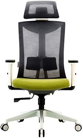 SIHOO Ergonomic Office Chair Computer Chair Adjustable Head Arm Rest