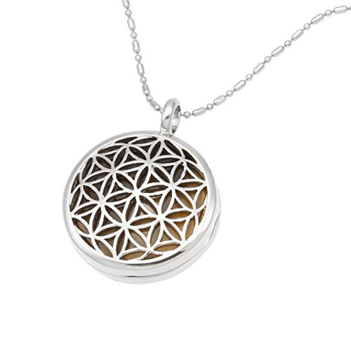 TUMBEELLUWA Flower of Life Locket Pendant Healing Crystal Necklace Hollow Stone Jewelry Unisex,Tiger