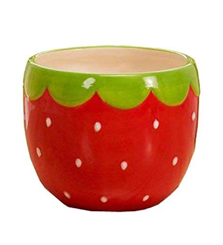 Napco Strawberry Flower Pot/Cache, 4.25-Inch (Strawberry Candy Dish compare prices)