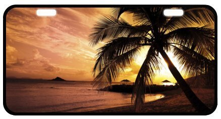 Ocean Beach Scene - Tropical Paradise Ocean Beach Scene with Palm Trees Novelty License Plate Decorative Front Plate 6.1