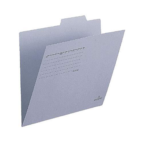 (まとめ)プラス 個別フォルダー FL-001IF A4E 青 10枚【×30セット】 生活用品 インテリア 雑貨 文具 オフィス用品 ファイル バインダー クリアケース クリアファイル 14067381 [並行輸入品] B07R7X6JQ6