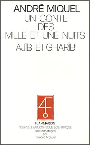 Un conte des Mille et une nuits, Ajîb et Gharîb: Traduction et perspectives danalyse (Nouvelle bibliothèque scientifique) (French Edition) (French) ...