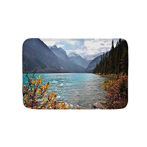 YOLIYANA Landscape Soft Door Mat,Lake Louise Banff National Park Canada Mountains Autumn Plants for Living Room,19.6