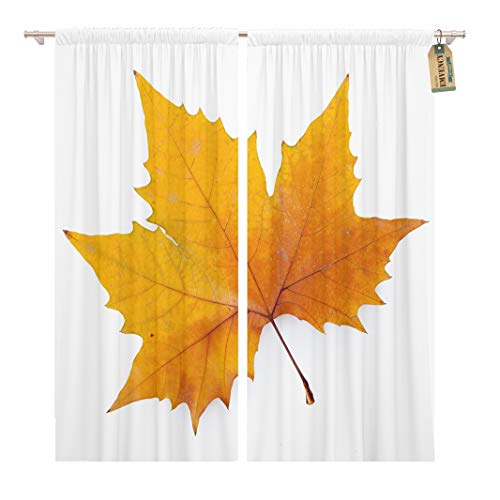 Golee Window Curtain Autumn Plane Tree Leaf White Keep Path Single Sycamore Home Decor Rod Pocket Drapes 2 Panels Curtain 104 x 63 inches ()