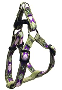 Hamilton Highland Collection Adjustable Easy on Dog Harness, 5/8-Inch by 12 to 20-Inch, Argyle/Sage