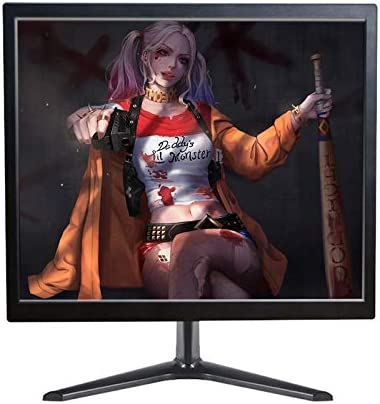 WIFIGDS 17 Inch HD Monitor with Built-in Speakers, Screen Ratio 4:3, HD 1280x1024 Display, Wide Viewing Angle HDMI VGA Wall Mountable, Gaming Monitor Screen for Raspberry Pi PS4 Xbox