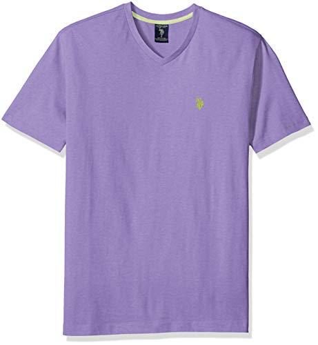 U.S. Polo Assn. Men's V-Neck T-Shirt, Paisley Purple, M