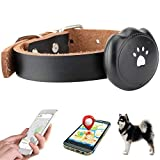JYS365 GPS Pet Tracker Dog Cat Locator Waterproof Convenient Long Battery Tracking Anti-Lost Activity Monitor Black