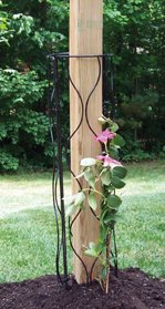 Bosmere L560 36-Inch Wire Trellis for - Gazebo Flower Box