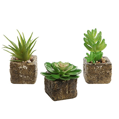 Decorative Artificial Succulent Centerpiece Realistic