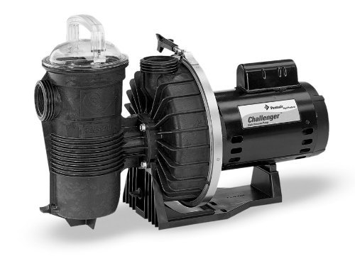 Pentair 345201 Stainless Steel Chellenger Black High Pressure Single Speed Full Rated Pump, ()